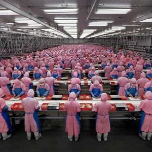 Andreas Gursky, fotógrafo
